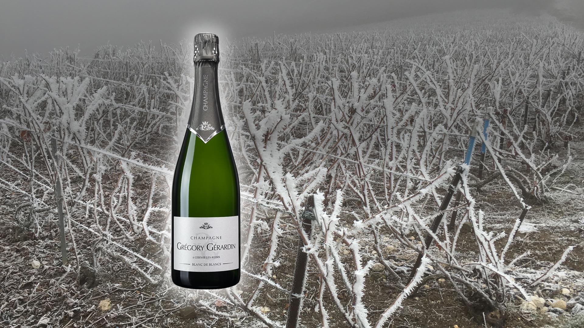 Champagne CUVEE BLANC DE BLANCS